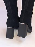 Сапоги-ботфорты на каблуке. Натуральная замша. Blue Tempt. Р. 35-40, фото 4
