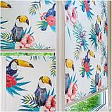 Рулонные шторы Детские Тукан тропический C-592, фото 2