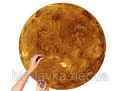 Настольные паззлы из 1000 штук Венера