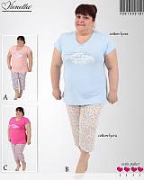 Женская пижама большого размерами с бриджами.