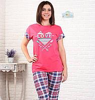 Комплект(46р-р) футболка-бриджи, Мелитопольская Трикотажная Фабрика