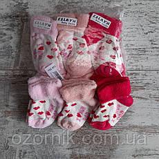 Оптом Махровые Носочки для Новорожденных Девочек Турция