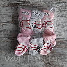 Оптом Яркие Махровые Носочки для Новорожденных Девочек Турция