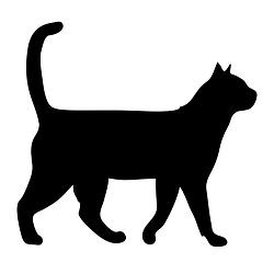 Товари для котів
