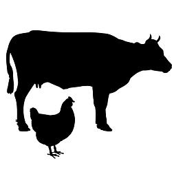 Товари для с/г тварин