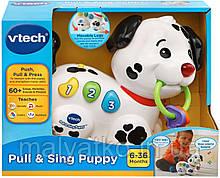 Інтерактивна розвиваюча музична іграшка щеня VTech Pull and Sing Puppy