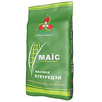 Насіння кукурудзи ДМ Вікторія ФАО 290