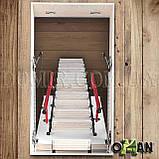Горищні сходи OMAN, фото 8