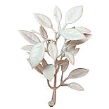 Добавка самшит белый 7,5 см  (100 шт. в уп.), фото 2