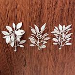 Добавка самшит белый 7,5 см  (100 шт. в уп.), фото 3