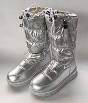 Детские дутики зимние теплые сапоги на зиму для девочки серебро Alaska 32р 20см, фото 3