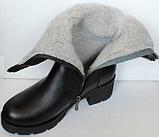 Сапоги на полную ногу женские зимние большого размера от производителя модель БР2120, фото 5