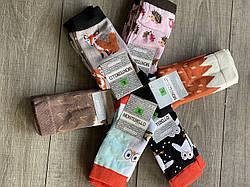 Жіночі котонові шкарпетки Montebello принт лісові звірята розмір 36-40 мікс кольорів