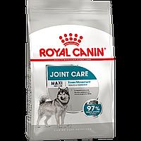 Royal Canin Maxi Joint Care 10 кг сухой корм (Роял Канин) для собак с повышенной чувствительностью суставов