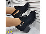 Ботильоны туфли на низком широком каблуке замшевые 38, 39, 40 р. (2313), фото 2