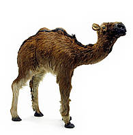Верблюд из кожи и меха 32х30х8см (18690)