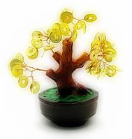 Дерево с монетами (16х16х10см)