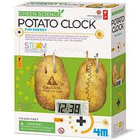 Набор для исследований Картофельные часы 4M (00-03275), фото 1