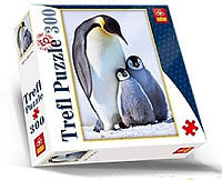 Пазл 300 ел. - Семья пингвинов Фото