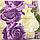 """Сімейна постільна білизна євро-розмір з двома підодіяльниками (11633) бавовна """"Ранфорс"""", фото 7"""