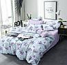 """Семейное постельное белье евро-размер с двумя пододеяльниками (15150) хлопок """"Ранфорс"""""""