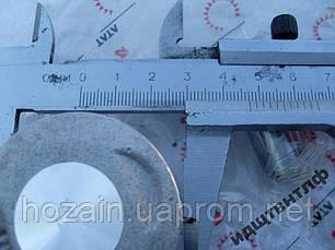 Поршень в комплекте 47мм (Альфа. Дельта) (шт.), фото 2