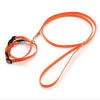 Комплект шлея и поводок для грызунов капроновый Грызун оранжевый