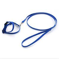 Комплект шлея и поводок для грызунов капроновый Грызун синий