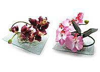 Цветок орхидеи на стеклянной подставке 20х15см (18799)