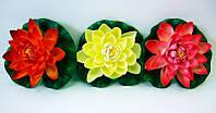 Цветок лотоса плавающий (17см)