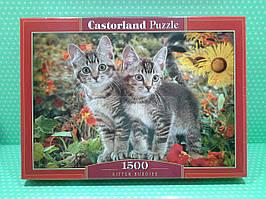 """Пазлы Castorland 1500 эл. """"Котята"""" (151899) 68*47 см"""