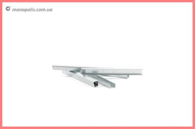 Скоба Intertool - 8 х 1,2 мм (1000 шт.), фото 2