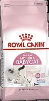 Royal Canin Mother & Babycat 0.4 кг сухой корм (Роял Канин) для котят в возрасте от 1 до 4 месяце