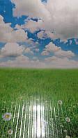 """Инфракрасный, пленочный, настенный обогреватель картина """"Ромашковое поле"""""""