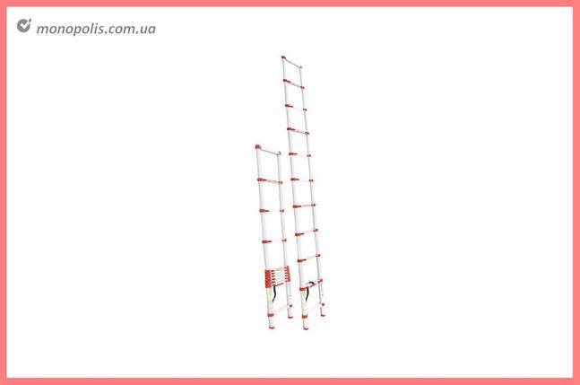 Драбина телескопічна Intertool - 3200 мм х 10 ступенів, фото 2