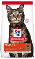 Hills Science Plan Adult Lamb - корм Хиллс для взрослой кошки, с ягненком и рисом 0,3 кг