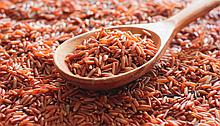 Рис червоний (рис красный)