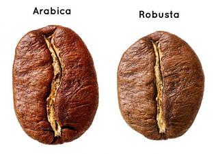Арабика и робуста / арабика или робуста