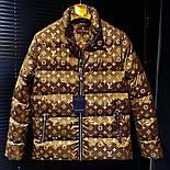 😜 Куртка - Мужскаяя куртка оверсайз Louis Vuitton, фото 2
