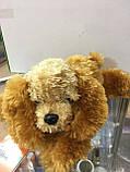 Мягкая игрушка Собака 00372, фото 2