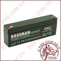 Акумулятор свинцево-кислотний Bossman Profi 12v 2.3 a/20HR (6FM2.3)