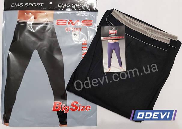 EMS термо штани батальна серія, фото 2