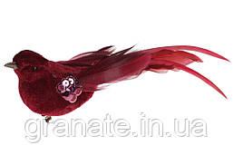 Декоративная птица на клипсе 17см (12 шт) бордо