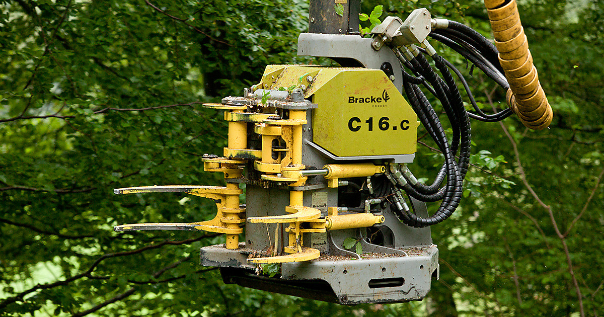 Валочная головка для рубок ухода и сбора биомассы Bracke C16.c Bracke Forest