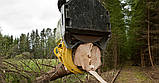 Валочная головка для рубок ухода и сбора биомассы Bracke C16.c Bracke Forest, фото 5