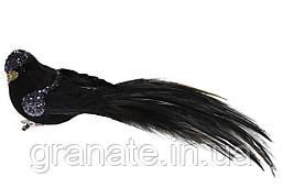 Декоративная птица на клипсе 19см (12шт)