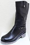 Сапоги на широкую ногу женские зимние большого размера от производителя модель РМ7435, фото 3