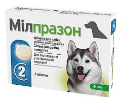 Мілпразон для собак масою тіла більше 5 кг.
