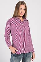 Carica Рубашка Carica BK-7643-16