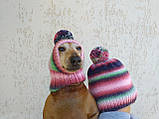 Набор женская шапка и шапка для собаки вязанные с помпоном, фото 2
